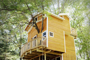 Djed sagradio unučadi trokatnicu u stablu